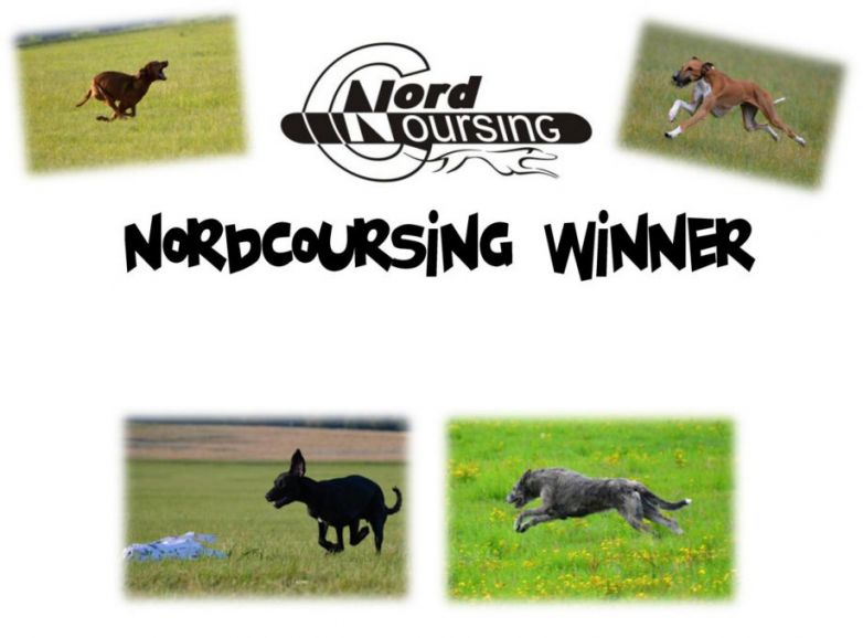 NordCoursing winner