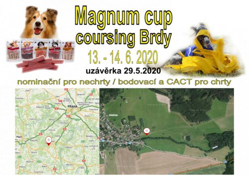 Magnum cup coursing Brdy